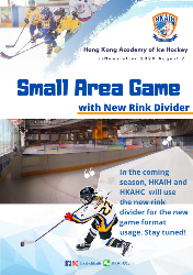 Small Area Game with New Rink Divider